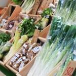 中途半端な自炊は外食より健康に悪い? 自炊時に気をつけるべき食材の選択について